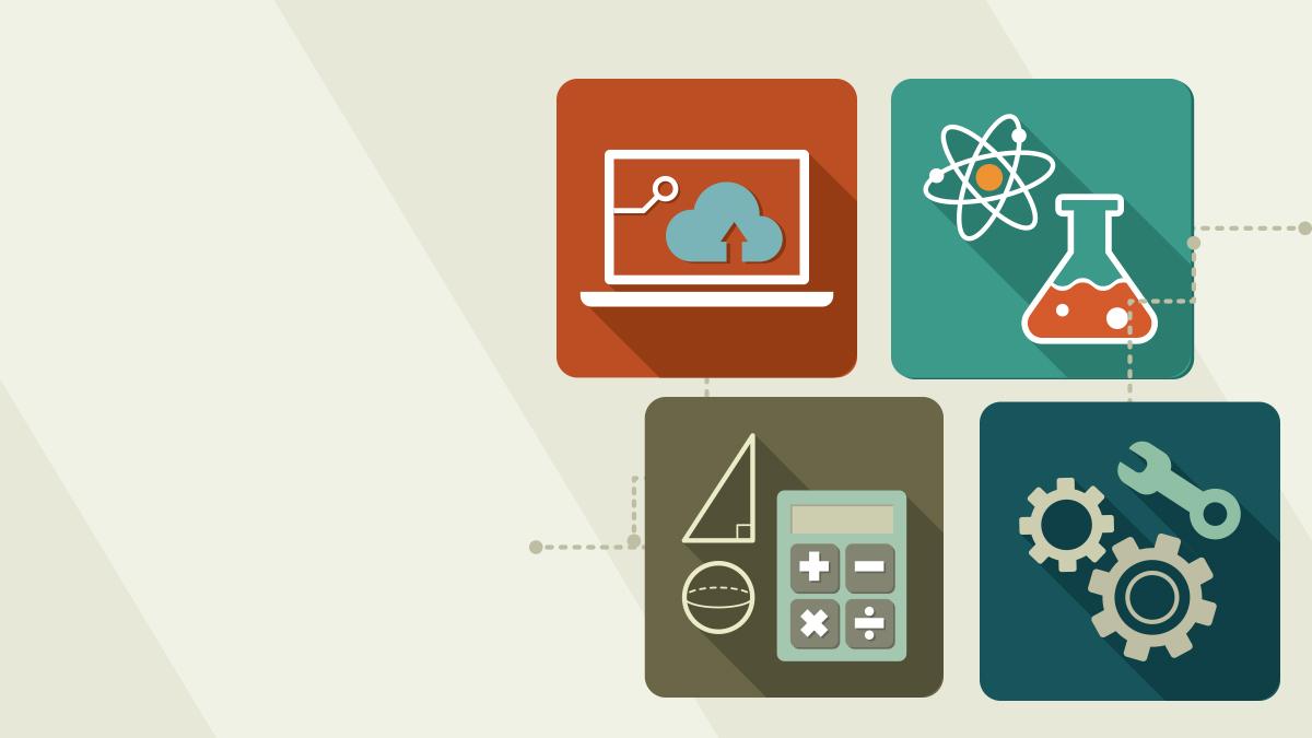 Unpacking the STEM Disciplines