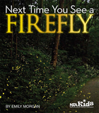 Next Time You See a Firefly cover